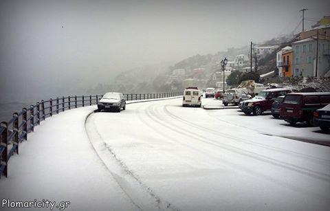 Βίντεο #2 από το χιονισμένο Πλωμάρι