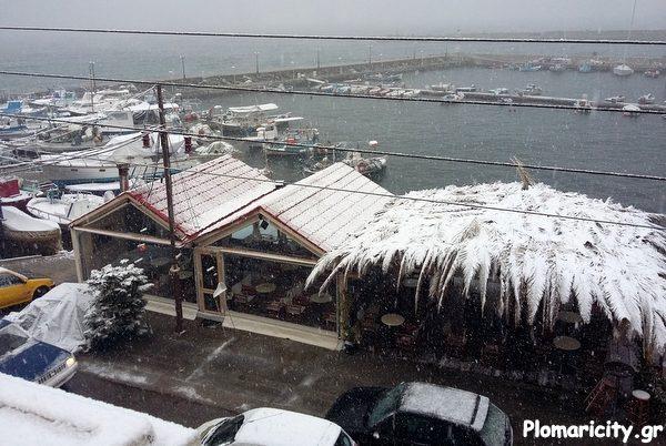 Βίντεο: Εντονότερη σήμερα η χιονόπτωση, διακοπή ρεύματος και κλειστά τα σχολεία